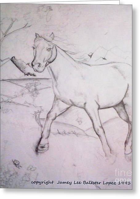 On The Ridge Sketch Greeting Card by Jamey Balester