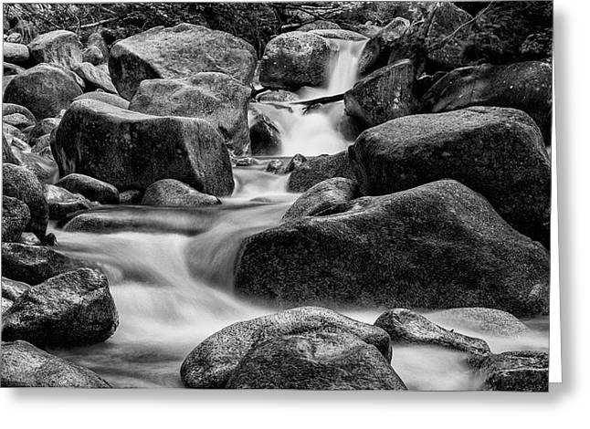 On The Rocks Greeting Card by Stephen Stookey