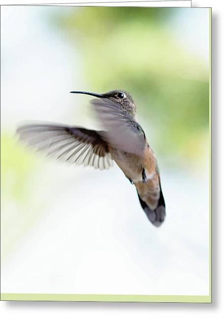 On The Wing 2 Greeting Card