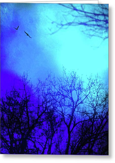 On The Wings Of Dawn Greeting Card by Susan Maxwell Schmidt