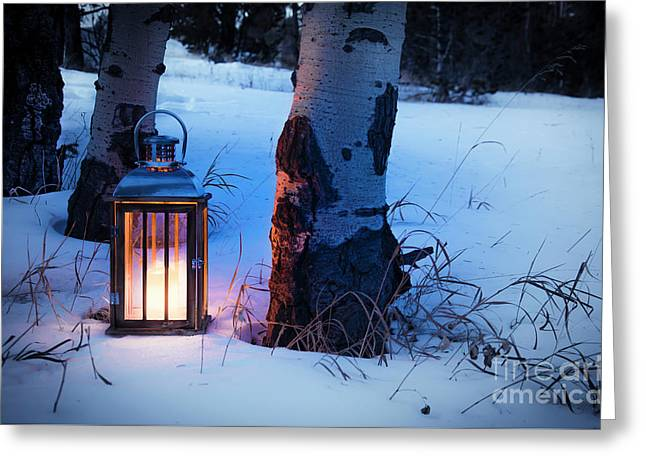Greeting Card featuring the photograph On This Winter's Night... by The Forests Edge Photography - Diane Sandoval