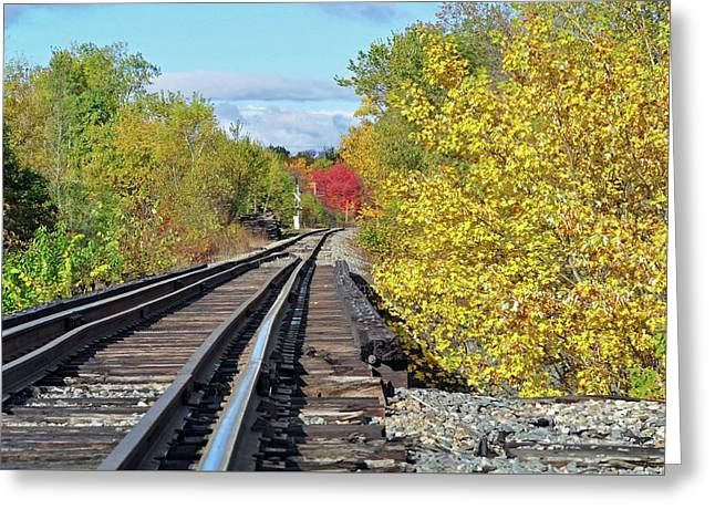 Greeting Card featuring the photograph On To Fall by Glenn Gordon