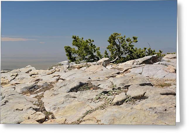 On Top Of Sandia Mountain Greeting Card