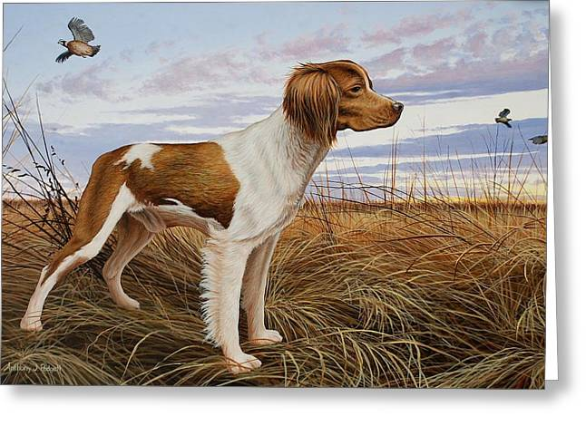 On Watch - Brittany Spaniel Greeting Card