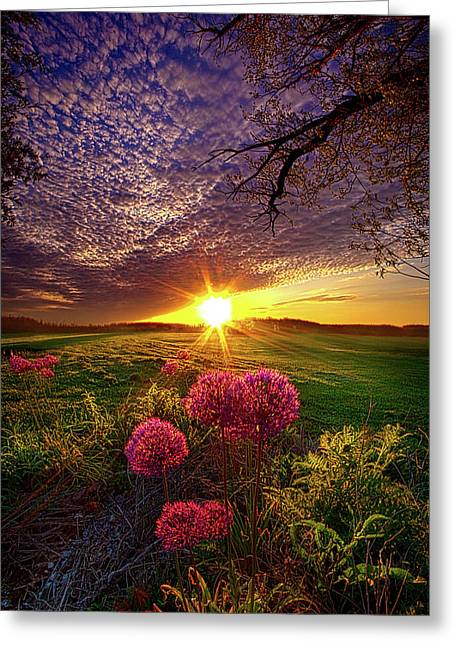 Once Upon A Lifetime Greeting Card by Phil Koch
