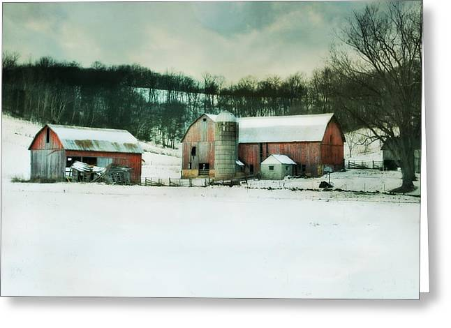 Once Was Special Greeting Card by Julie Hamilton