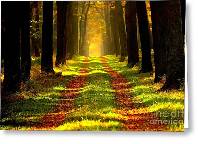 One Autumn Day Greeting Card