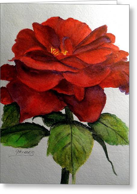 One Beautiful Rose Greeting Card by Carol Grimes