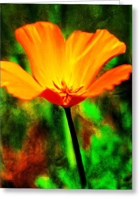 One California Poppy Greeting Card