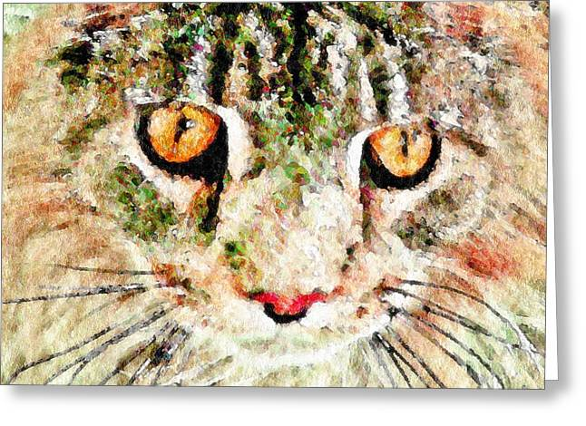 One Cool Cat Greeting Card by Terry Mulligan