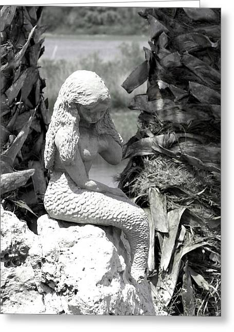 One Day.. Black N White Greeting Card by Debbie May