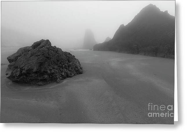 One Day In The Fog Greeting Card by Masako Metz