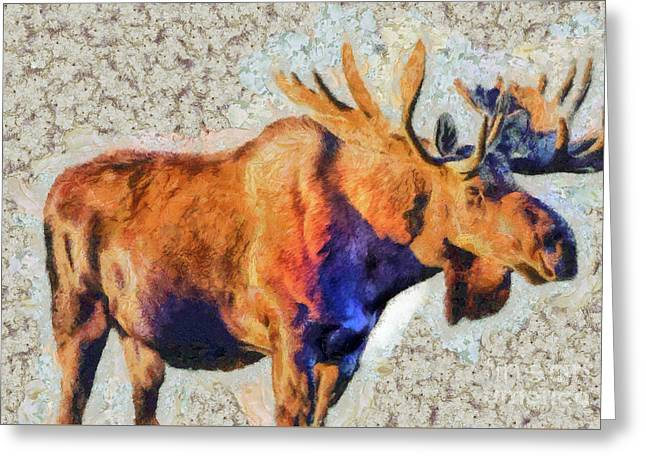One Handsome Moose Greeting Card
