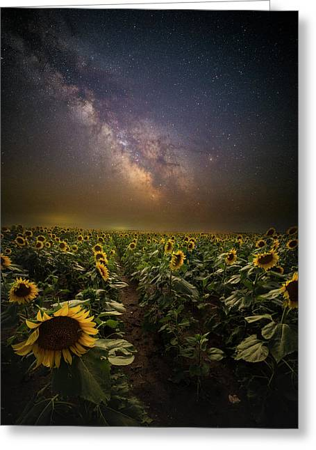 Greeting Card featuring the photograph One In A Million  by Aaron J Groen