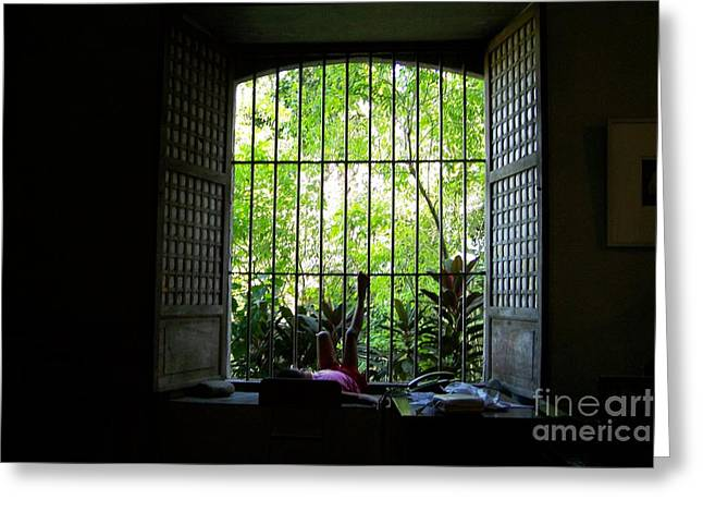 One Lazy Sunday Afternoon By The Window Greeting Card by Dindin Coscolluela