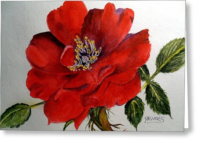 One Lone Wild Rose Greeting Card by Carol Grimes