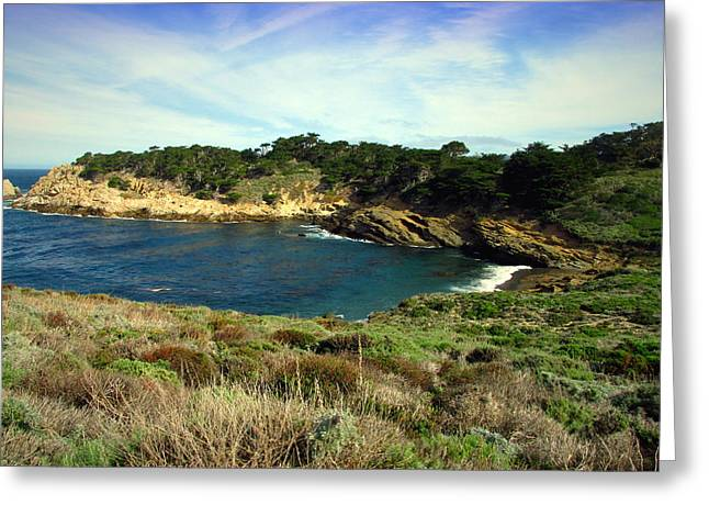 One Of Point Lobos South Side Coves Greeting Card