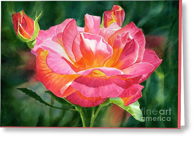 One Red And Gold Rose Blossom Dark Background Greeting Card by Sharon Freeman