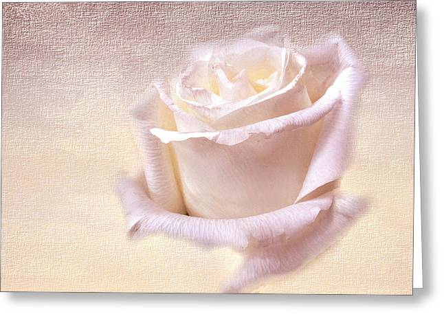 One Rose Is Enough For The Dawn Greeting Card