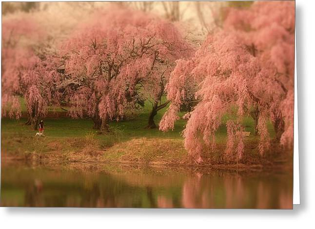 One Spring Day - Holmdel Park Greeting Card by Angie Tirado