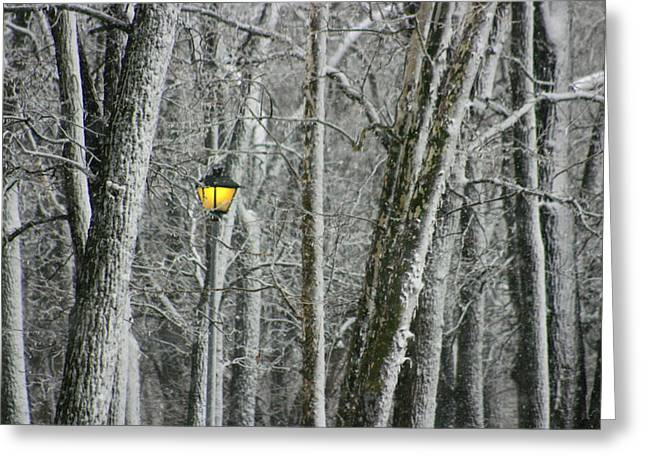 Greeting Card featuring the photograph One Strange Tree 1 by David Dunham