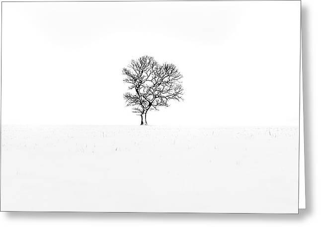 One Tree Farndale Greeting Card