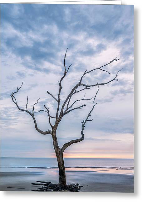One Tree In Jekyll Greeting Card