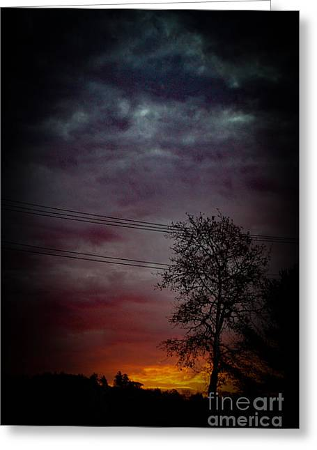 One Tree Under Colorful Sky Greeting Card by Victory Designs