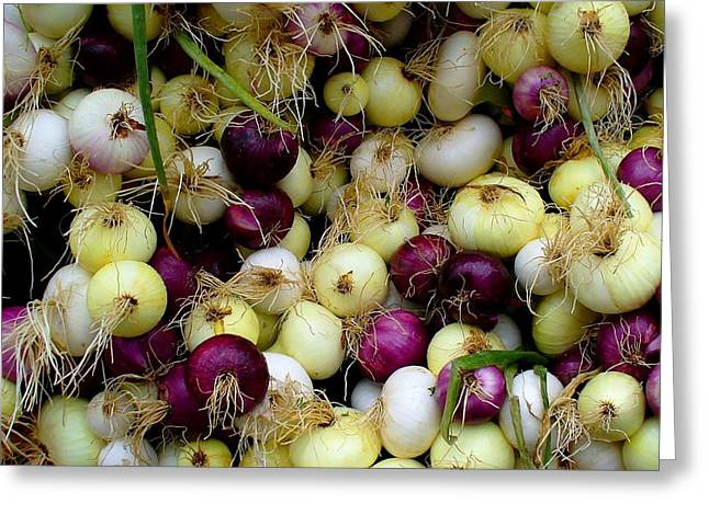 Greeting Card featuring the photograph Onions Tri Color by Brenda Pressnall