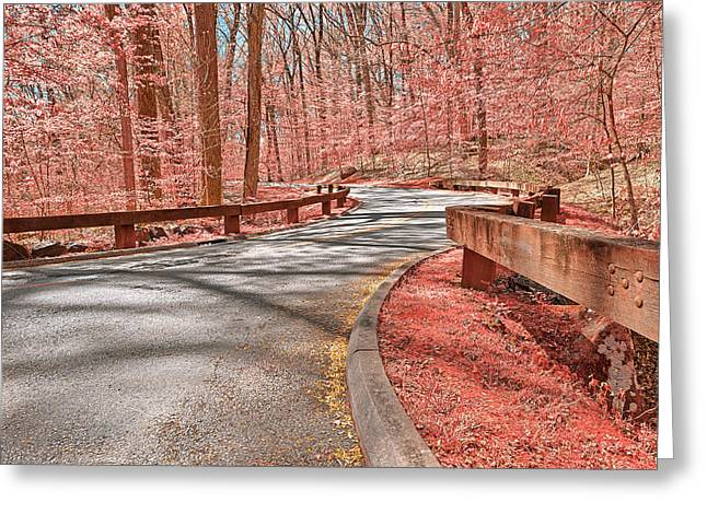Opalescent Forest Road Greeting Card