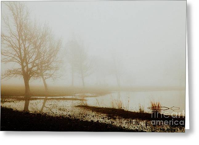 Greeting Card featuring the photograph Open Space by Iris Greenwell