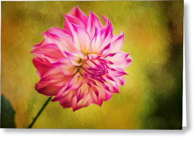 Computer Painted Greeting Cards - Opening Dahlia Painted Greeting Card by Mary Jo Allen