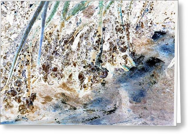 J-lintz - Mangrove Shoreline Greeting Card