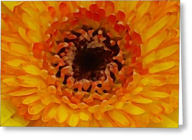 Orange And Black Gerber Center Greeting Card by Amy Vangsgard