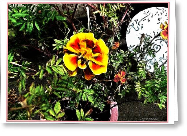 Greeting Card featuring the photograph Orange And Yellow Flower by Joan  Minchak