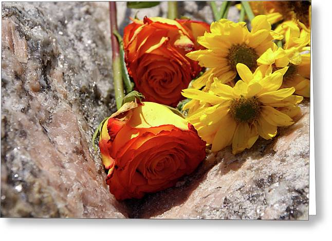 Orange And Yellow On Pink Granite Greeting Card
