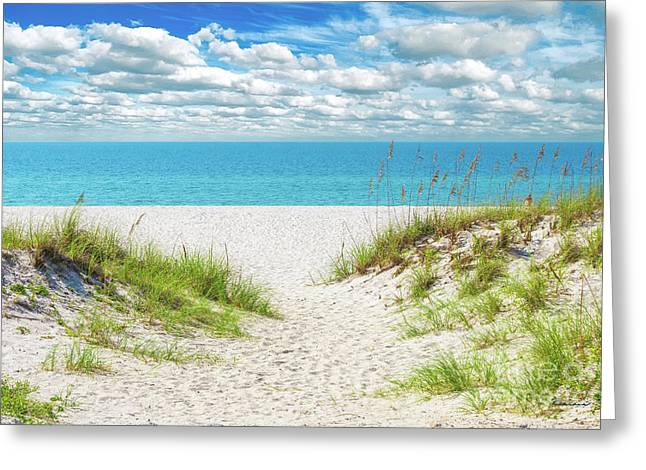 Orange Beach Al Seascape 1086a Greeting Card
