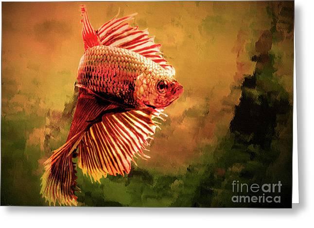 Orange Betta Fish Greeting Card