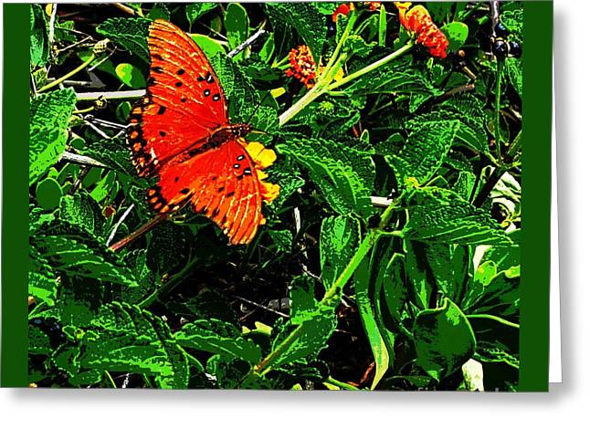 Orange Butterfly By Jasna Gopic Greeting Card by Jasna Gopic