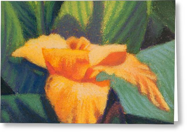 Orange Cannas Greeting Card
