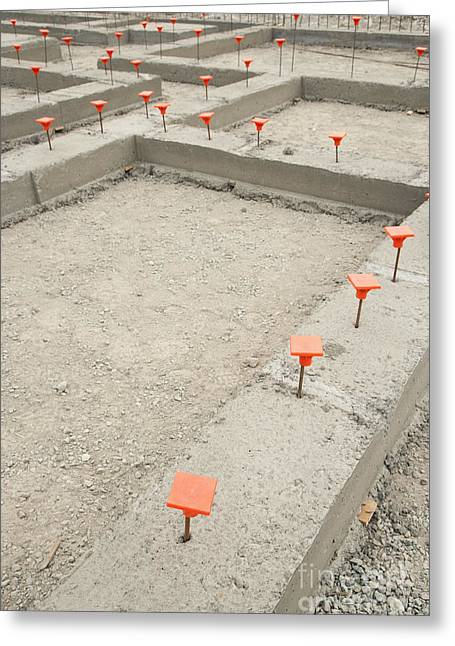 Orange Caps In Cement Foundation Greeting Card by Shannon Fagan