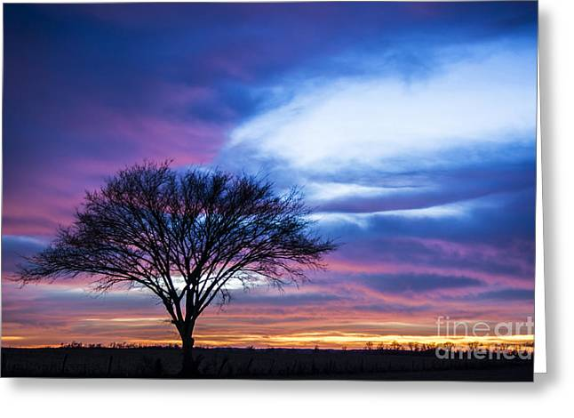 Orange County Sunset - D009836 Greeting Card by Daniel Dempster