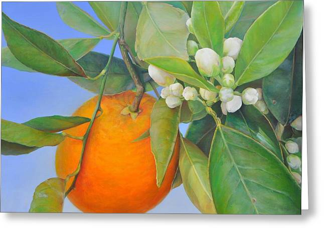 Orange En Bouton Greeting Card by Muriel Dolemieux