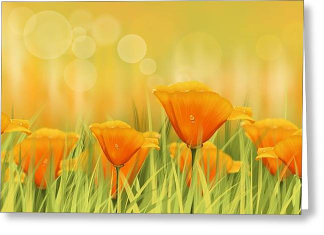 Orange Field Greeting Card by Veronica Minozzi