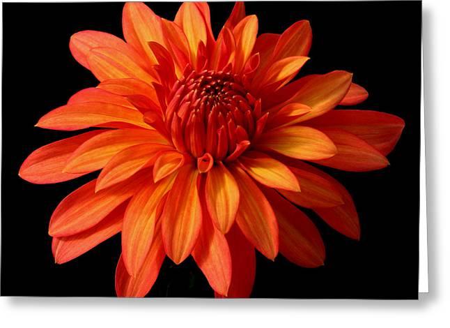 Orange Flame Greeting Card