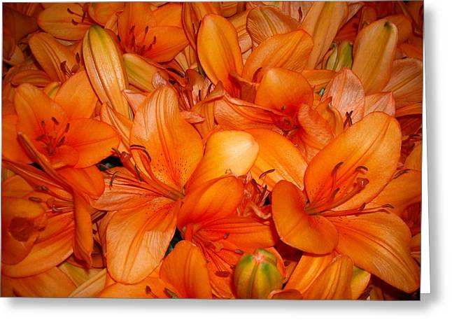 Orange Flowers Greeting Card by Liliana Ducoure