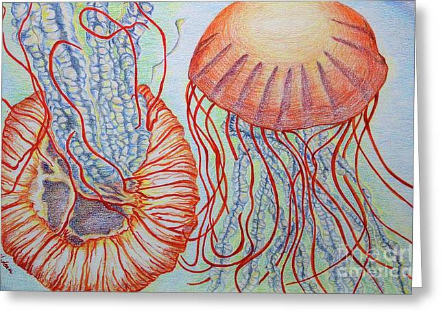 Orange Jellies Greeting Card by Julie Nadeau