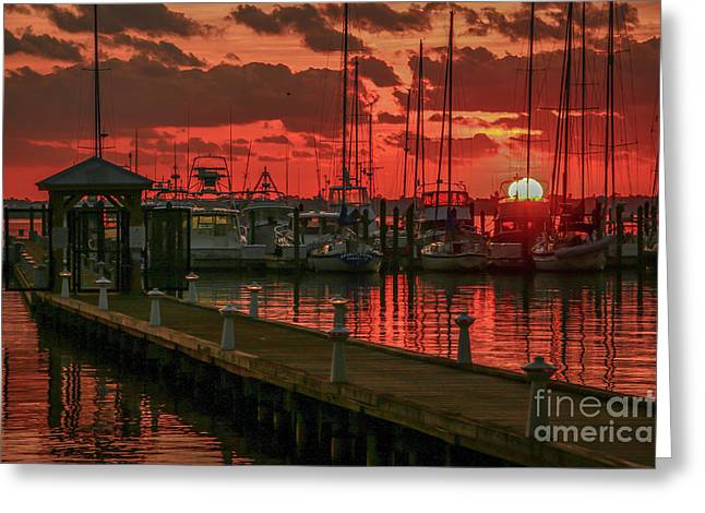 Orange Marina Sunrise Greeting Card by Tom Claud