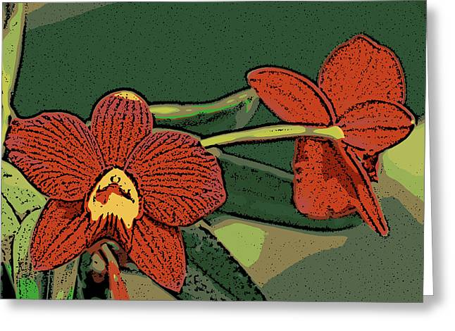 Orange Orchids Greeting Card