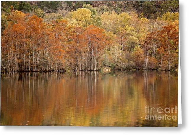 Greeting Card featuring the photograph Orange Pool by Iris Greenwell